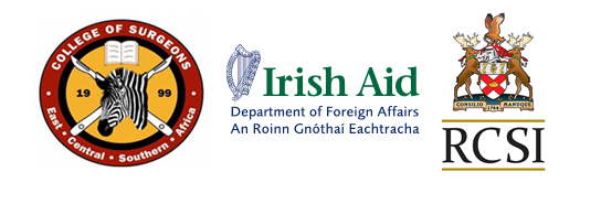 20120613054449_cosecsa, irish aid, rcsi banne